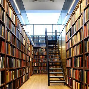 Библиотеки Торопца